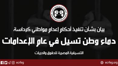 #بيان| دماء وطن تسيل في عام الإعدامات